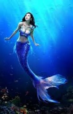 Which mythical creature are you? I am a mermaid! Magical Creatures, Fantasy Creatures, Sea Creatures, Mermaid Fairy, Mermaid Tale, Fantasy Mermaids, Mermaids And Mermen, Real Mermaids, Fantasy Kunst