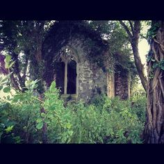 bxclnt2ecothr:  Old church ruins I found in Wales. A crypt in there was dated 1698. It had a graveyard too.