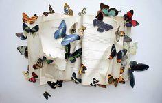 borboletas no estomago borboletas everywhere