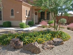 I live in the desert. As much as I love flowers and lush landscapes, this is the kind of yard I can hope for...