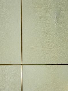 Light green shagreen with contemporary bronze detail