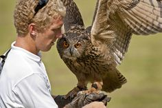 Educator Monty Wallace with the Eurasian Eagle Owl