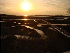 Salt Marsh has some of the best sunset views on Seabrook! Kiawah Island Rentals, Seabrook Island, Salt Marsh, Best Sunset, Real Estate Services, Coastal Living, New Construction, Charleston, Beach