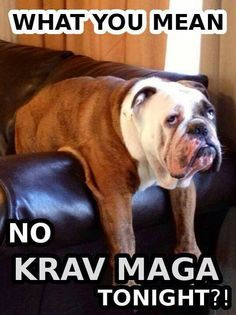 How you feel when you don't do Krav Maga!(Step Class Humor)