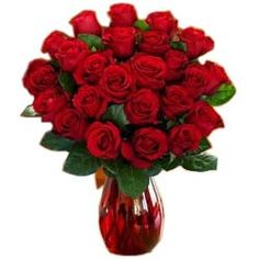 Send flowers to Kanpur from the best flower collection of MyFlowerTree, Online Florist in Kanpur. With an attractive packaging from best Florist in Kanpur that will leave your loved ones. Beautiful Bouquet Of Flowers, Send Flowers, Types Of Flowers, My Flower, Flower Vases, Flower Arrangements, Flower Bouquets, Beautiful Gif, Beautiful Roses