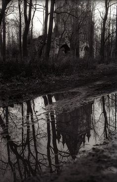 Gothic landscape | Yaroslav Gerzhedovich - Flickr - Photo Sharing!