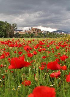 Plasencia, Cáceres, Extremadura, Western Spain.