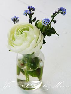 simple and small arrangement of white flower with blue accent