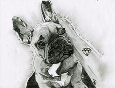 Marley, Bouledogue français  #Dog #Drawing #CNM