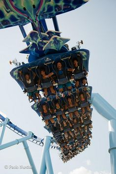 Manta - Sea World Orlando, FL - Scared the daylights out of me!