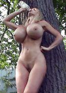 Pandora Peaks - Big Siliconed Tits #17538021 - PICTOA.COM