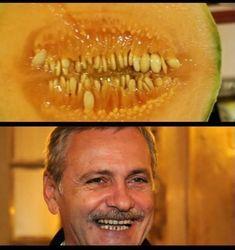 Funny Pics, Funny Pictures, Comic, Politics, Humor, Fruit, Nice, Food, Fanny Pics
