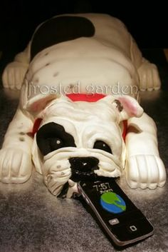 Bulldog cake. God help me if I ever have a lot of disposable income...