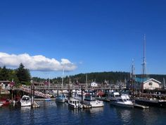 Friday Harbor | © Mitch Barrie/Flickr