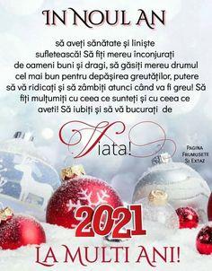 Christmas Bulbs, Spirit, Holiday Decor, Motto, Christmas Light Bulbs, Mottos