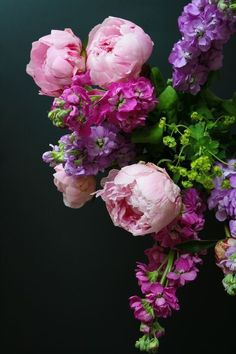 Peonies and Sweet Williams