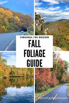 Best places to see Northern Virginia fall foliage on fun Autumn day trips in the Washington DC region.