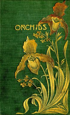 Orchids: Their Culture and Management  Orchids: Their Culture and Management. London, 1903.     Call No.: 584 .15 W343  Location: The George Peabody Library