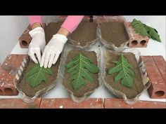 Ideas For Making Pots From Leaves And Plastic Bottles - Beautiful Ideas For Garden From Cement Cement Art, Cement Crafts, Concrete Art, Concrete Projects, Concrete Forms, Concrete Garden Ornaments, Diy Concrete Planters, Diy Planters, Diy Storage Projects