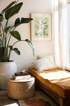 great use of a corner space. small bed to host others in an office or corner space. large plant adds element of privacy paired with basket storage (store blankets here) that also canserve as a sort of end table. simple art piece. light and still warm colors capture sun and create space.