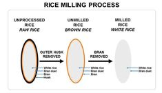 Rice milling is the process which helps in removal of hulls and barns from paddy grains to produce polished rice.