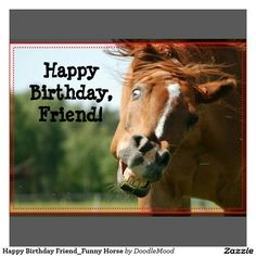 Happy Birthday Horse Friend Wishes Cards
