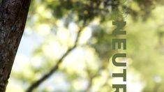 Beim Wachsen nimmt ein Baum soviel CO2 auf, wie er später bei der Verbrennung wieder abgibt. Heizen mit Biomasse gilt daher als CO2-neutral. Lediglich Faktoren wie Verarbeitung und Transport des Brennstoffs schlagen sich in der Klimabilanz zu Buche. Und das in einem sehr geringen Maß. Über die verschiedensten Möglichkeiten zentral mit Holz zu heizen, wie beispielsweise mit Scheitholz, Pellets oder Hackgut informieren wir Sie gerne. Co2 Neutral, Home Technology, Random Stuff, Tree Structure
