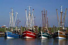 Ostfriesland. Deichen, Windmühlen, Schafen, schwarzweißen Kühen, fruchtbarem…
