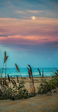 *🇺🇸 The Moon at sunset (South Padre Island, Texas) by Micah Goff 🌅