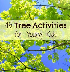 Tree Activities for Kids.science investigations, literacy and math activities, book-related projects, and many terrific crafts and paintings! Tree theme ideas for preschool and early elementary. Outdoor Education, Outdoor Learning, Kids Learning, Kids Education, Nature Activities, Science Activities, Activities For Kids, Science Crafts, Movement Activities