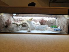 Pimp my Vivarium MKII!!! - Reptile Forums