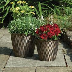 Gablemere Pack of 2 Basket Weave Planters