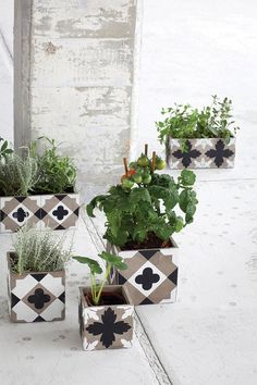 Serax | Maceteros hechos con baldosas cerámicas • Planters made of ceramic tiles, very nice!