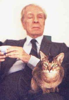jorge luis borges: cat people.