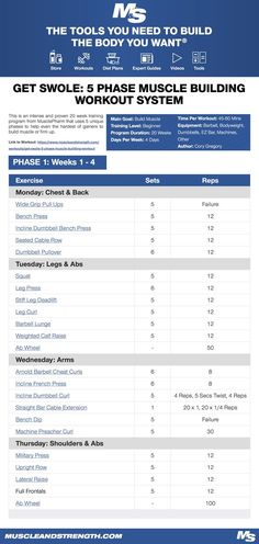 (Click through to download PDF!) This is an intense and proven 20 week training program from MusclePharm that uses 5 unique phases to help even the hardest of gainers to build muscle or firm up. #workout #gym #fitness #bodybuilding