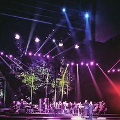 Koncert, opera leśna, fun, Sopot, Zaucha