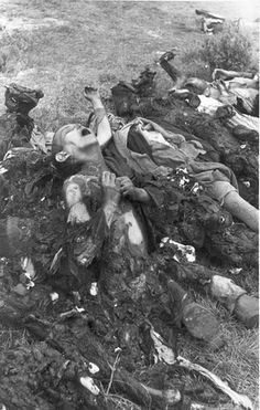 Klooga, Estonia, September 1944, A row of partially charred corpses...