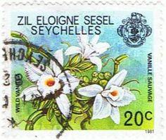 NA, wild.vanilla, Vanilla NA, Seychelles, orc138