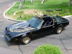 1981 Pontiac Trans Am - this one is VERY much like the 79 that I had. LOVEDDDDDDDDDD that car. Wish I still had it. : (
