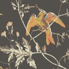 Hummingbirds Wallpaper in Veridian and Charcoal Hexagon Wallpaper, Orange Wallpaper, Hummingbird Wallpaper, Cole And Son, Icon Collection, Hummingbirds, Design Inspiration, Drawings, Flowers