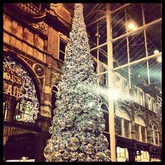 tree. Xmas, Christmas Tree, Leeds, Holiday Decor, Home Decor, Teal Christmas Tree, Decoration Home, Room Decor, Christmas