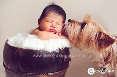 24 Newborns Who Had To Share The Spotlight At Their First Photo Shoot   707   by buzz   13 Oct 2014   CloudHAX Article