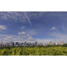 New York, Skyline, Hochhäuser, Sehnswürdigkeiten, Skyline, Central Park, New York City, Fototapete Merian, Fotograf: P. Koschel