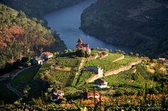 Douro river #Portugal