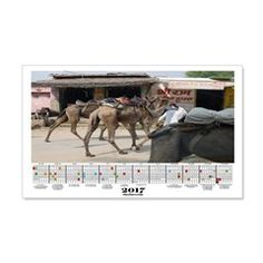 2017 Calendar Egypt Camels Wall Decal  More than 100 to choose from.  Follow this link   http://www.cafepress.com/cheylines/14087576
