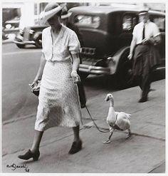 hauntedbystorytelling:    Ruth Jacobi :: New York, 1928     related post by…