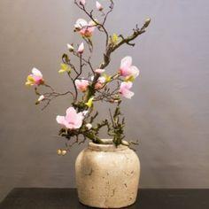 Magnolia roze - Seta Fiori