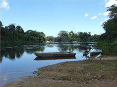 Riverside Brokopondo - Suriname  Photo by Stuart Vrede