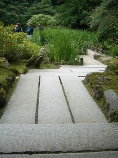 paths, pavers, concrete or stone, landscaping, hardscaping