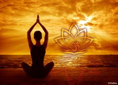 Yoga Lifestyle Shopnetzwerk Yoga Studio Design, Chakra System, Gautama Buddha, Signs Of Anxiety, Stress And Anxiety, Yoga Inspiration, Ayurveda, Yoga For Pregnant Women, Beating The Blues